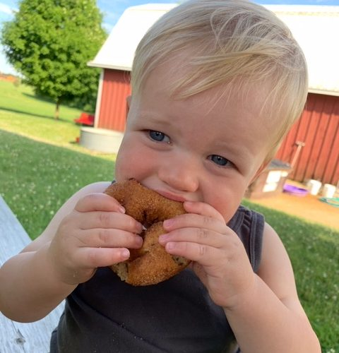 Baby enjoying a donut at Curran's Orchard